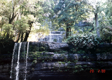 Mt. Fields falls